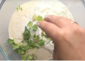 Coriander leaves in mixing bowl